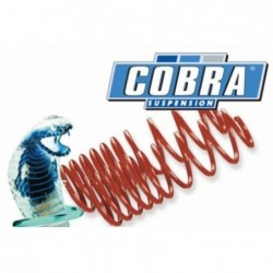 SPORTS SPRINGS COBRA COB1028